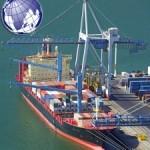 ocean transport خشب الزان